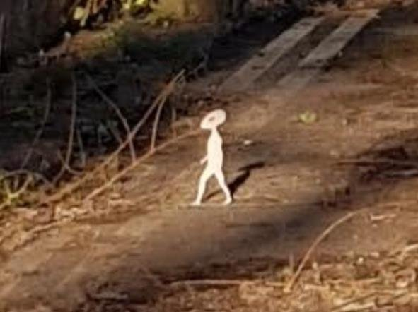 The 'tiny' humanoid captured on camera by Mellisa