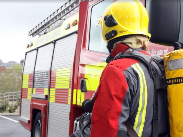 Wigan borough firefighters rescue cat from tree
