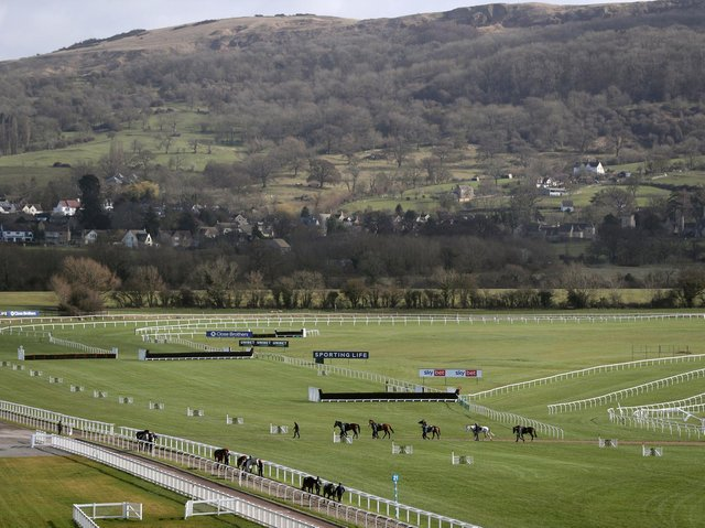 Willie Mullins' horses return from the gallops at Cheltenham racecourse ahead of the Cheltenham Festival which starts on Tuesday.