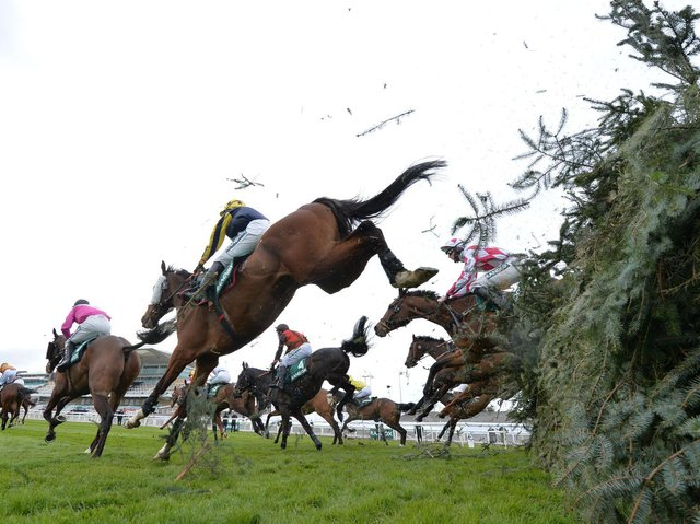 The Grand National takes place at Aintree on Saturday