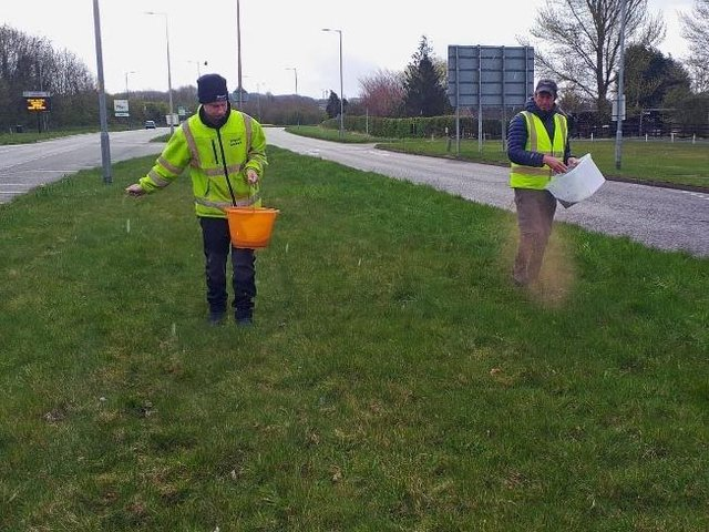Ron Wade (pictured right) with Kieran Sayer from Wigan Council seeding the grassed area in Standish