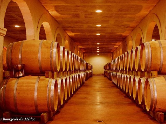 Some delicious wines in the making  Photo: Crus Bourgeois du Medoc