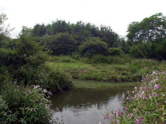 The River Douglas