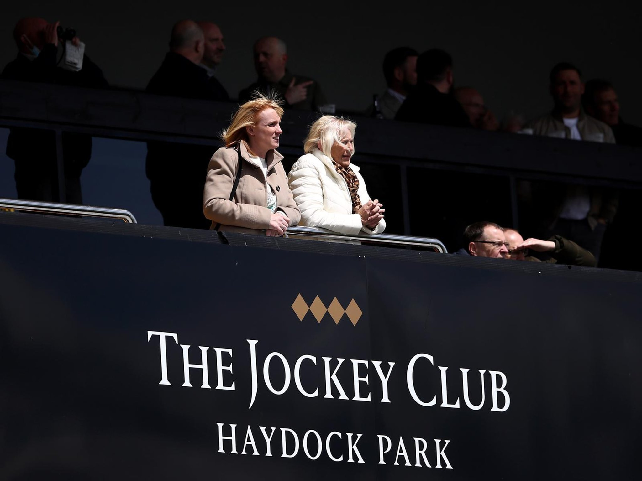 Hawk appears to swoop on rivals at Haydock on Friday