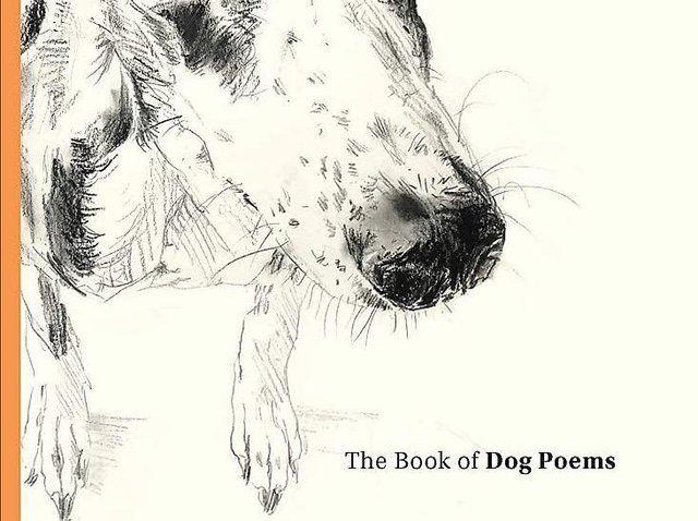 The Book of Dog Poems